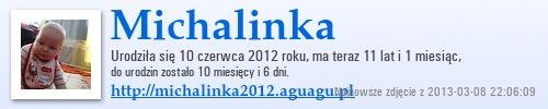 http://michalinka2012.aguagu.pl/suwaczek/suwak3/a.png